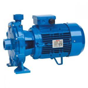 Elettropompe centrifughe bigiranti